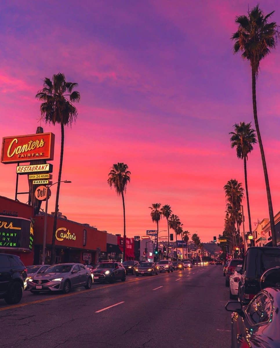 palm trees and a sign that says cantors over a los angeles sunset