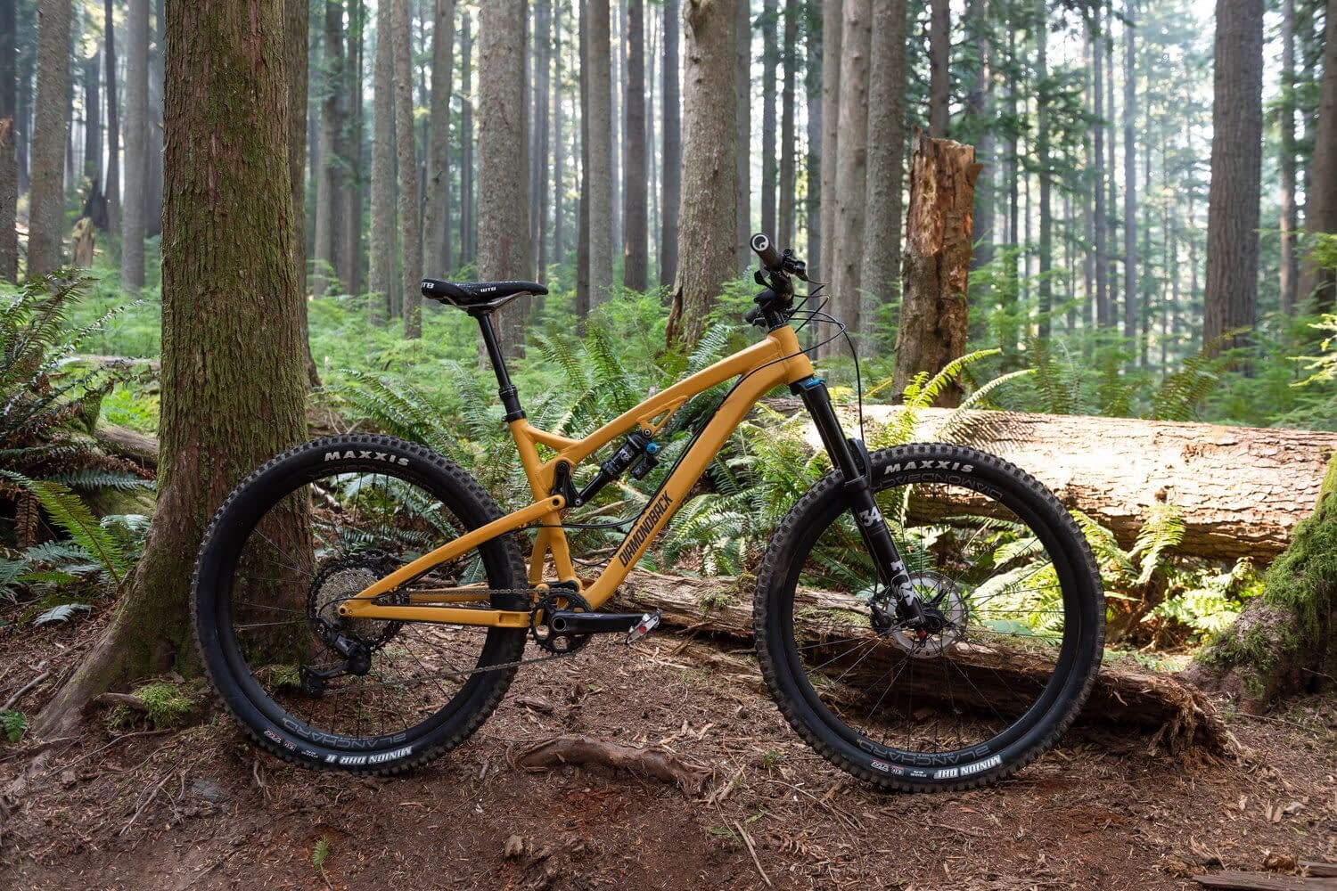 a yellow mountain bike in a forest