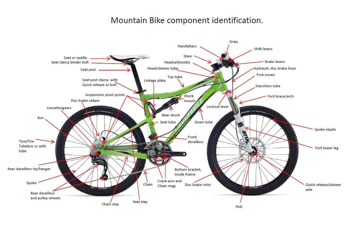 a green mountain bike with black tires with components labeled in red